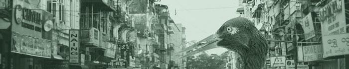 banner_1a